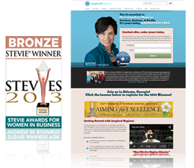 2013 Stevie Award Winner for Website Design
